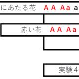 【兵庫県公立高校入試解説】2021年度 理科 大問Ⅱ