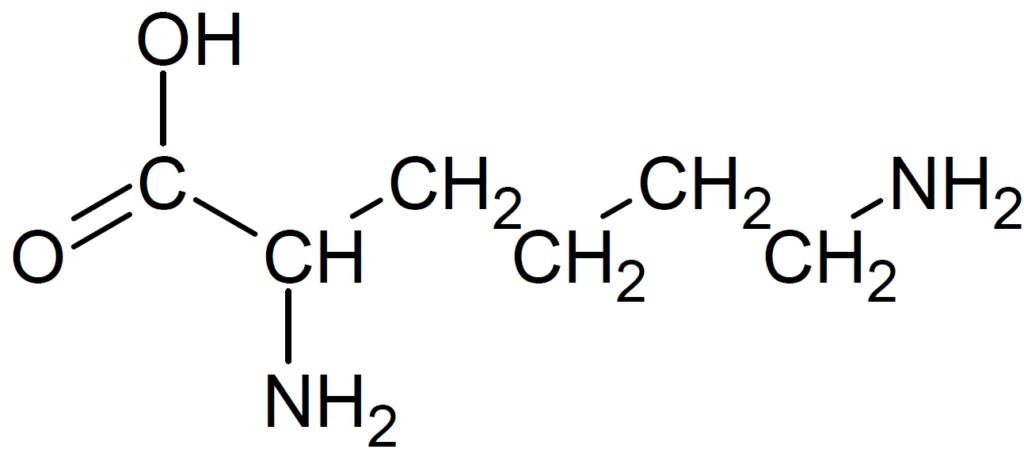 リシンの構造式